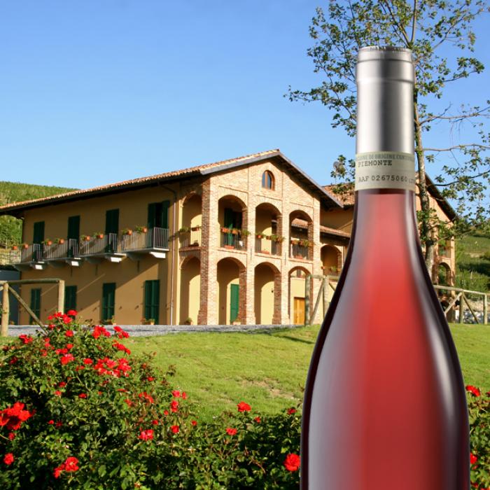 אווירה יין רוזה